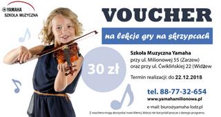 Voucher na lekcję gry na skrzypcach